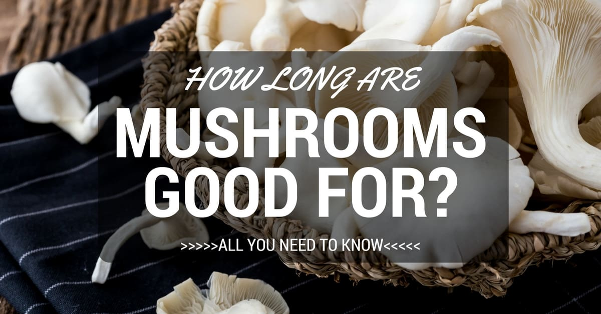 How Long Are Mushrooms Good For? All You Need To Know
