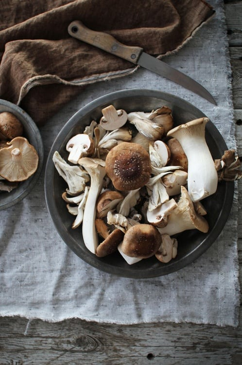 how long are mushrooms good for